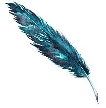Blue Feather Content